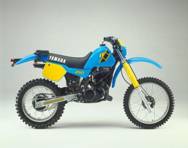 IT250 (1983)
