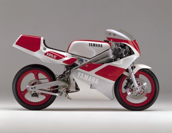 TZ250 (1989)
